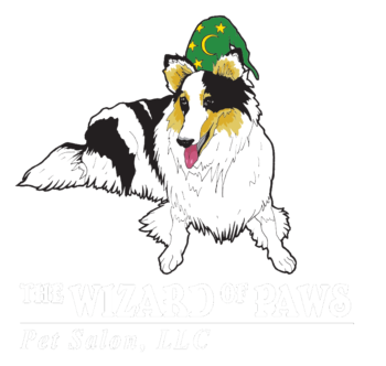 The wizard of paws pet salon llc solutioingenieria Choice Image